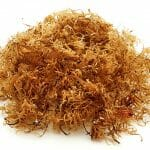 Irish Moss, or also known as Carrageenan