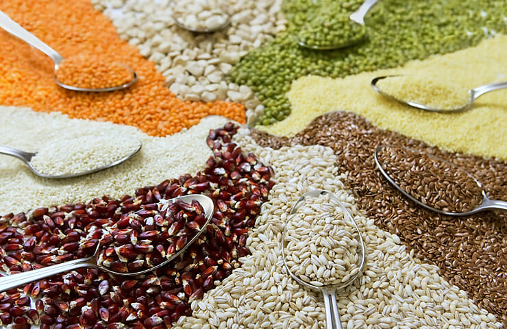 Seeds for a Healthier Menopause Journey